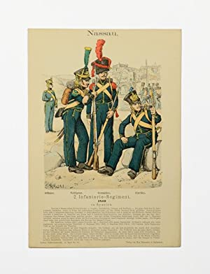 ?Nassau. 2. Infanterie-Regiment. 1810 in Spanien
