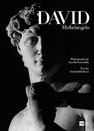 Michelangelos David.: Von Aurelio Amendola