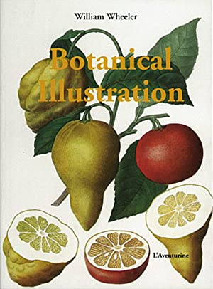 Botanical Illustration: Von William Wheeler.