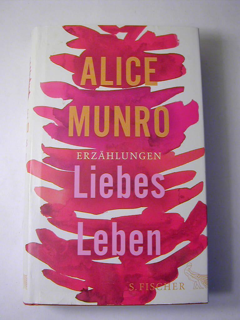 Liebes Leben : 14 Erzählungen: Alice Munro