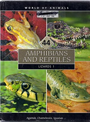 World of Animals Volume 44: Amphibians and: Davies, Valerie and