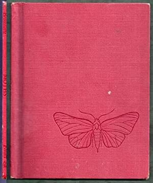 Moths: Brouillette, Jeanne S.
