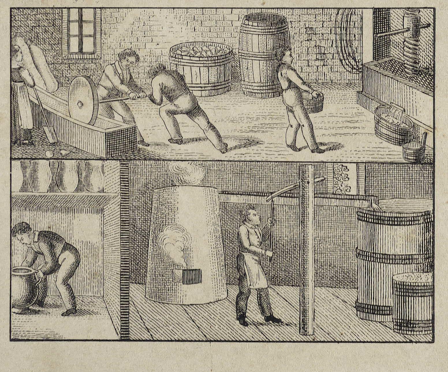 Berufe. - Bierbrauer. - Orbis pictus. Johann Amos Comenius & Jacob Eberhard Gailer
