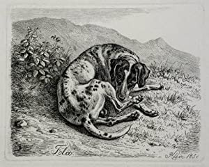"Klein, Johann Adam. - Hühnerhund. - ""Folco""."