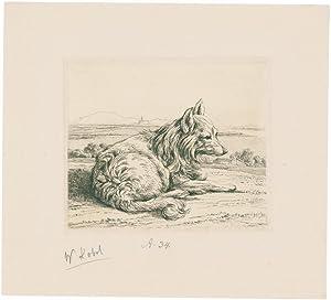 nach rechts liegender hund. von kobell, wilhelm von (1766