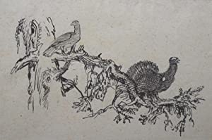 "Auerhahn"", um 1925.: Lobisser, Switbert."