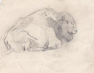 "Bison"", um 1920.: Lobisser, Switbert."