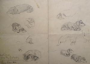 "Dackelporträts"", um 1930.: Lobisser, Switbert."