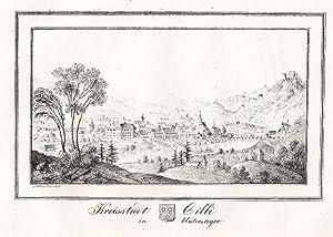 """Kreisstadt Cilli in Untersteyer""""."""