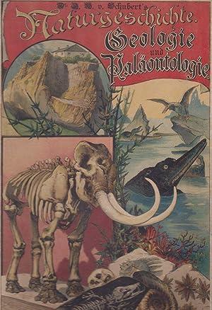 Illustrierte Geologie und Paläontologie. Zum Anschauungs-Unterricht für die Jugend in ...