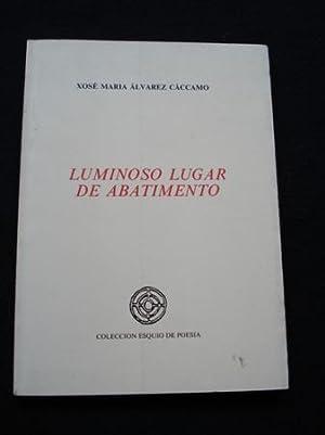 Luminoso lugar de abatimento: Álvarez Cáccamo, Xosé