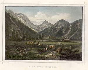Alpe Gern in Tirol.: Gernalm
