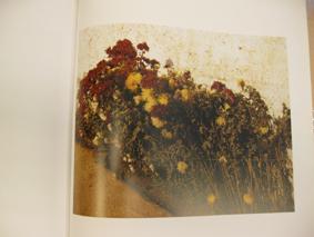 JEAN-MARC BUSTAMANTE. TABLEAUX 1978-1982.: Catalogue)