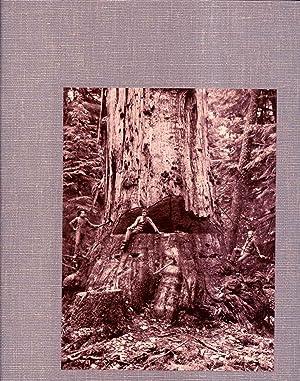 Kinsey Photographer 3 Volumes: Bohn, Dave and Rodolfo Petschek