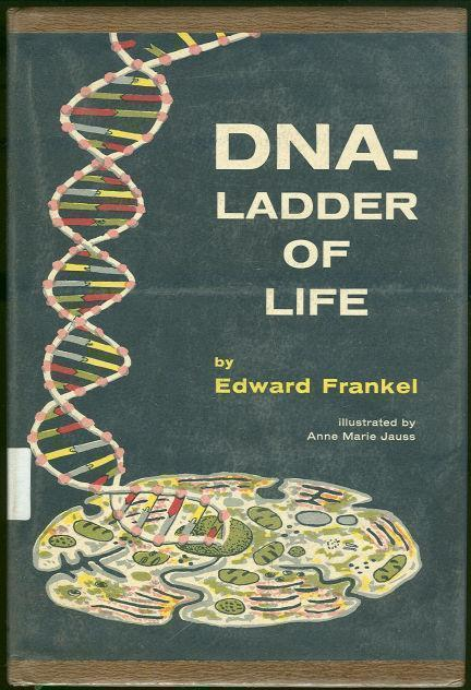 DNA LADDER OF LIFE, Frankel, Edward