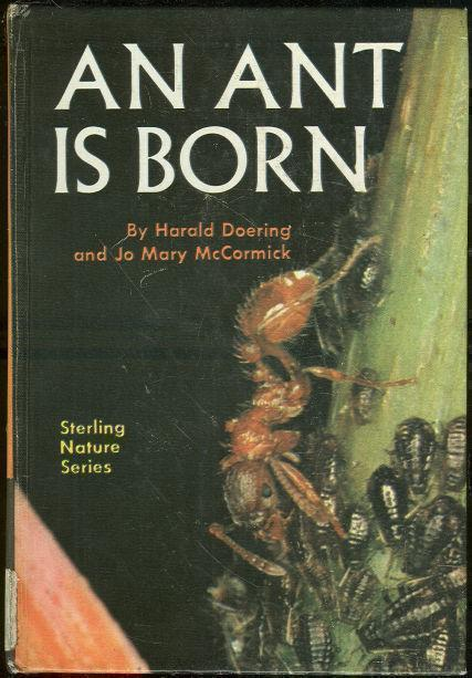 ANT IS BORN, Doering, Harald