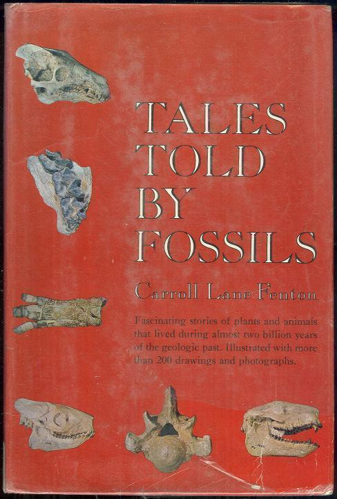 Image for TALES TOLD BY FOSSILS