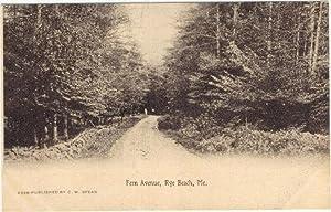 FERN AVENUE, RYE BEACH, MAINE: Postcard