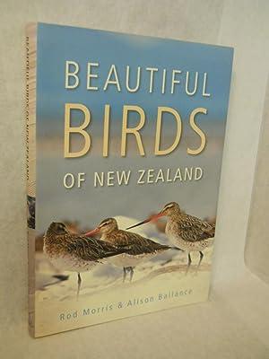 Beautiful New Zealand Birds: Ballance, Alison