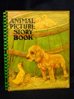 Animal Picture Story Book