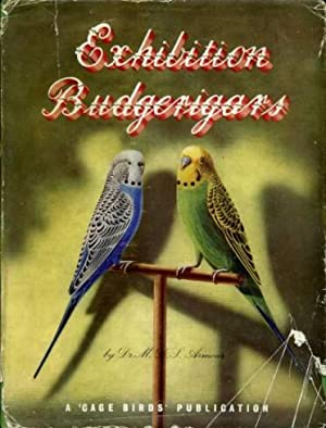 Exhibition Budgerigars