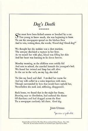 Dog's Death: Updike, John