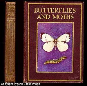 Butterflies and Moths: Kelman, Janet Harvey