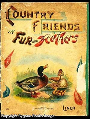Country Friends in Fur and Feathers: Anonymous