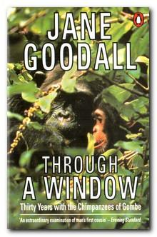 through a window jane goodall essays Get this from a library through a window : my thirty years with the chimpanzees of gombe [jane goodall] -- goodall continues her story of the study of chimpanzees and their society in the gombe stream national park in tanzania.