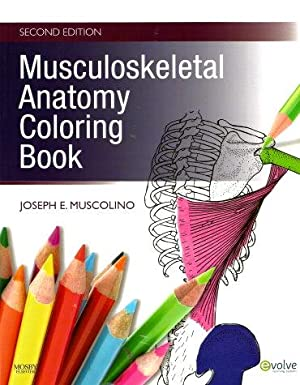 MUSCULOSKELETAL ANATOMY COLORING BOOK Second Edition