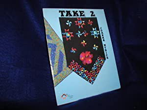 Take 2: Eleven Contemporary or Traditional Two-Color Quilts