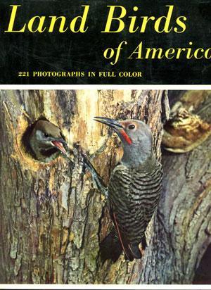 Land Birds of America.: Murphy, Robert Cushman and Dean Amadon.