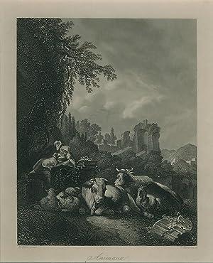 Viehstück / Animaux.: Roos, J. H.: