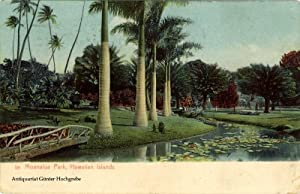 Moanalua Park, Hawaiian Islands, 58.: Island Curio & Co., Jas. Steiner, Honolulu - Publisher: