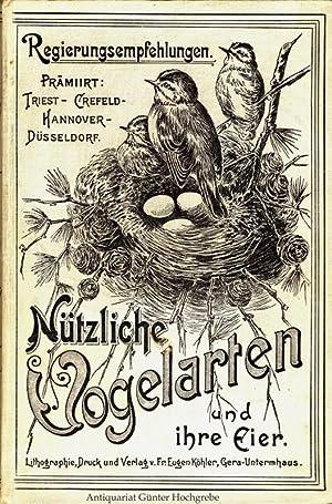 Köhler's nützliche Vogelarten und ihre Eier.
