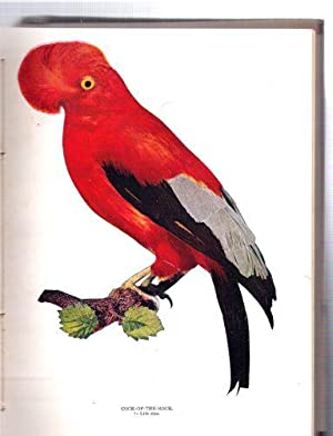 Birds/Illustrated by Color Photography/A Monthly Serial Designed to Promote Knowledge of ...