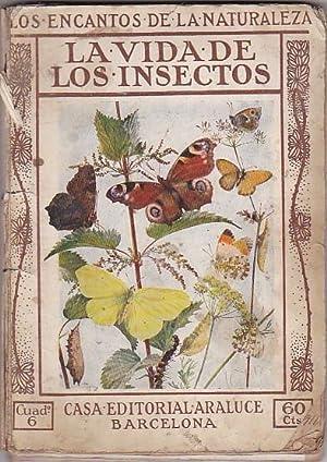 La vida de los insectos: BUCKLEY, Arabella B.