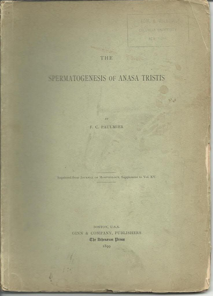 The Spermatogenesis of Anasa Tristis: Paulmier, F. C.