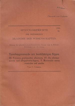 Vererbungsversuche mit buntblattrigen Sippen. III. Veronica gentianoides albocincta, IV. Die ...
