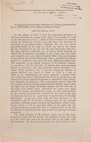 On Some Gynandromorphic Specimens of Abraxas Grossulariata: Doncaster, L. Leonard Doncaster