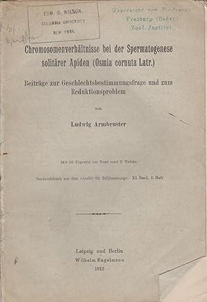 Chromosomenverhaltnisse bei der Spermatogenese soliarer Apiden (Osmia cornuta Latr.): Beitrage zur ...