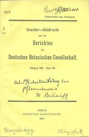 Wl. Belajeff: Ueber die Reductionstheilung des Pflanzenkernes: Belajeff, WI.