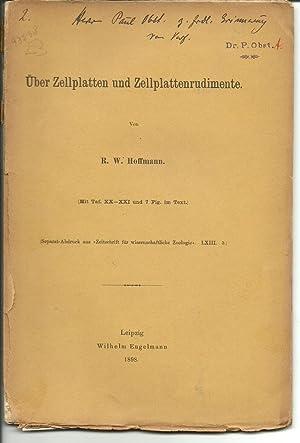 Ueber Zellplatten und Zellplattenrudimente: Hoffmann, Richard Wolfgang