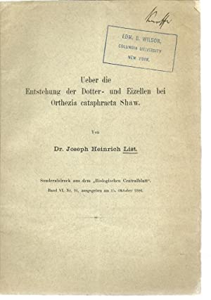 Ueber die Entstehung der Dotter- und Eizellen bei Orthezia cataphracta Shaw: List, Joseph Heinrich