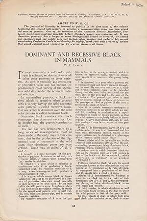 Dominant and Recessive Black in Animals: Castle, W. E.