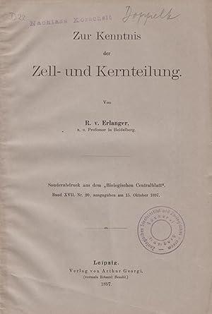 Ueber die Spindelbildung in den Zellen der Cephalopodenkeimscheibe: Erlanger, R.V.