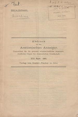 Note sur Meccanismo della Fecondazione e della Divisione Cellulare, Studiato Principalmente in Nova...