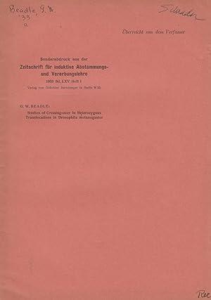 Studies of Crossing-over in Heterozygous Translocation in Drosophila melanogaster: Beadle, G.W.