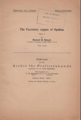 The Excretory Organs of Opalina: Metcalf, Maynard M.