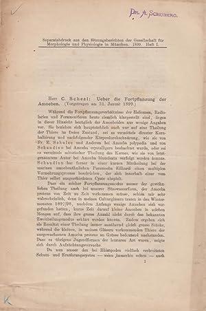 Ueber die Fortpflanzung der Amoeben: Scheel, C.